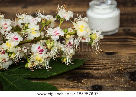 the flowers of chesnut with jar of cream