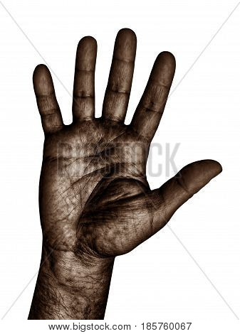 Black color Human Hand gesture isolated on white background taken closeup.