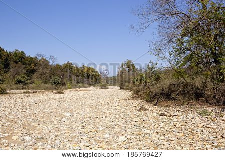 Kalesar Nature Reserve