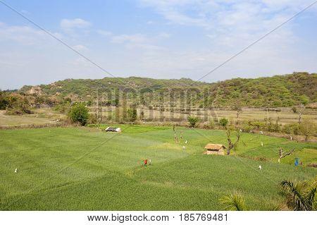 Morni Hills Farmland