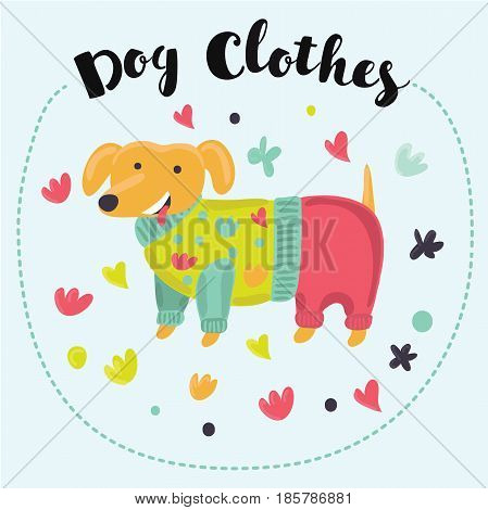 Funny cartoon long Dachshund dressed in colorful clothes. Cute dogs in overalls