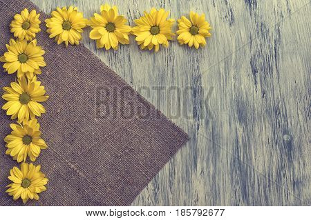 A flower of chrysanthemum on a wooden surface. The background