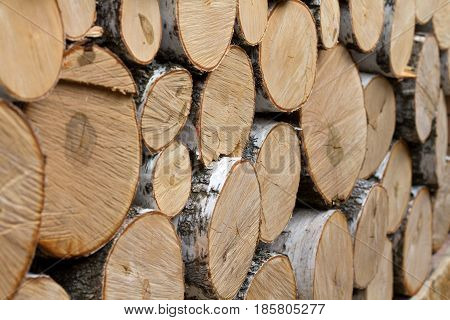 birch logs are stacked in a pile of bricks. background. side view