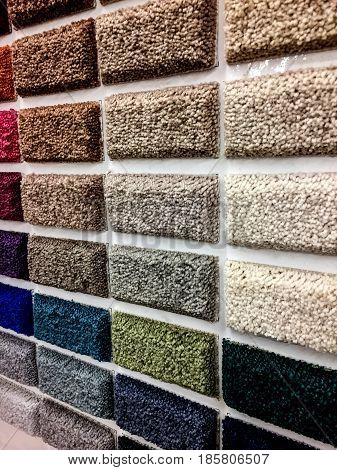 Carpet Store. Shop carpets. Picker carpet. Carpet samples in the store. carpet made of looped and sheared fibers, carpet color samples