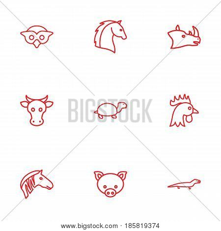 Set Of 9 Beast Outline Icons Set.Collection Of Owl, Lizard, Horse And Other Elements.