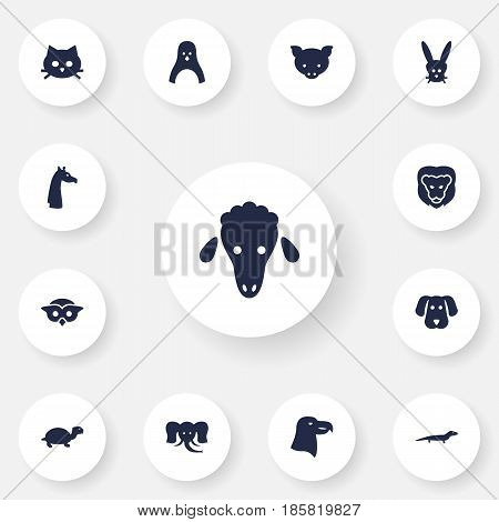 Set Of 13 Alive Icons Set.Collection Of Gecko, Bunny, Lamb And Other Elements.