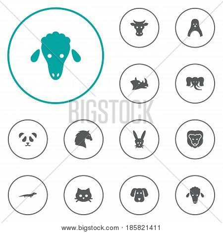 Set Of 12 Brute Icons Set.Collection Of Diver, Bunny, Steed And Other Elements.