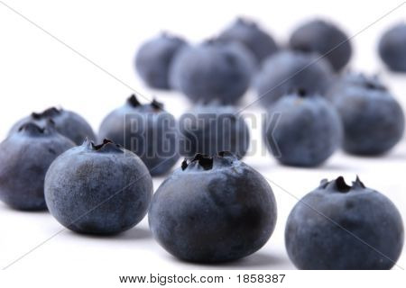 Blueberries On White Background With Shadow.