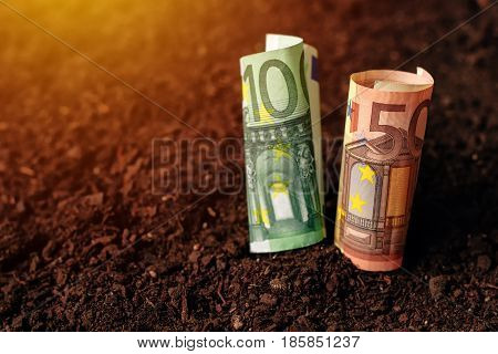 Euro banknotes cash money in fertile soil ground making income in agriculture and agricultural activity like growing crops