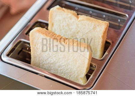 Double Bread piece in Toaster for breakfast