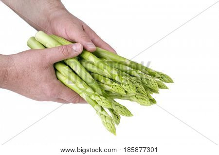 Fresh green Asparagus as close-up in hands of a man covered on white background