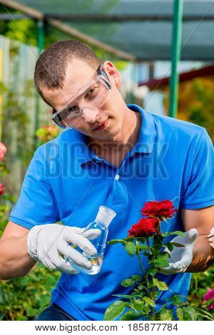 Biologist Professional With A Test Tube Takes A Sample Of Flowers
