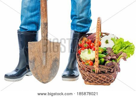 Feet of a farmer in rubber boots and a basket of vegetables on a white background close-up