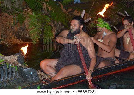 Maori Man In Traditional Waka Boat