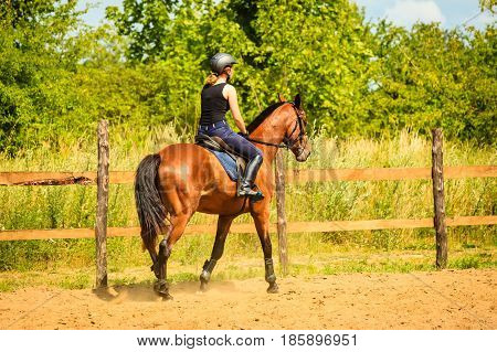 Taking care of animals horsemanship western competitions concept. Jockey girl doing horse riding on countryside meadow sunny day outside