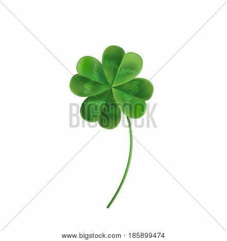 Four Leaf Clover for good luck. Vector illustration for the holiday of St. Patrick. Clover can be used on the website, magazine, newspaper, banner, poster.