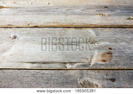 Old wood for background. Nice Wooden texture
