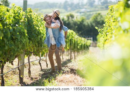 Cheerful couple taking selfie while piggybacking at vineyard during sunny day