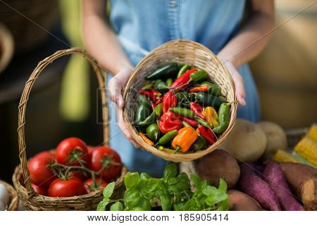 Mid section of woman holding bell peppers in wicker basket at farm