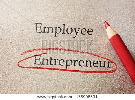 Entrepreneur circled in red pencil with Employee text above
