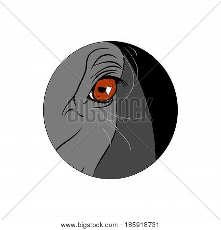 The sight of the horse. Vector round icon. The horse's eyes.