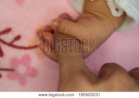 A new father holds his newborn infant baby's hand for the first time. Parent holding newborns hand. Hand in hand. Parenthood. Motherhood. Family.
