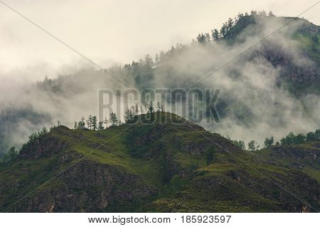 Fog in the mountains. Overcast weather. Altai.