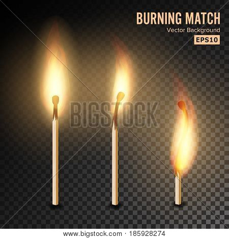 Realistic Burning Match Vector. Matchstick Flame. Transparency Grid