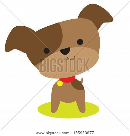 An adorable little brown puppy with a red collar