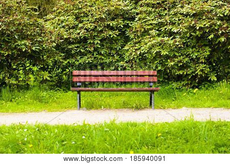 Empty dark red wooden bench in the park. A place to sit in nature. Natural bench beside the park.