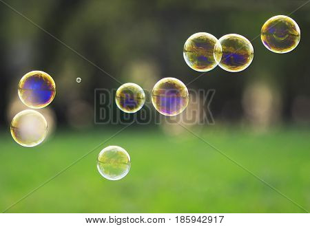 beautiful festive background with iridescent rainbow transparent soap bubbles on green grass