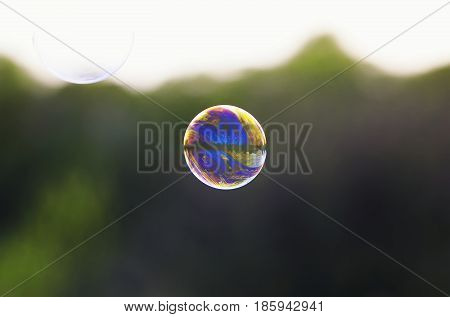 bright iridescent soap bubble with reflections of flying on a bright summer meadow on a Sunny day
