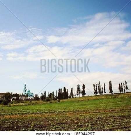 Monastery fields near Spaso-Preobrazhensky Cathedral. Toned photo. Vegetable gardens. Sunny summer day. Valaam Monastery Republic of Karelya Russia.