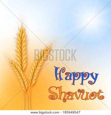 Vector illustration for the Jewish holiday of Shavuot. Wheat or rye ears.