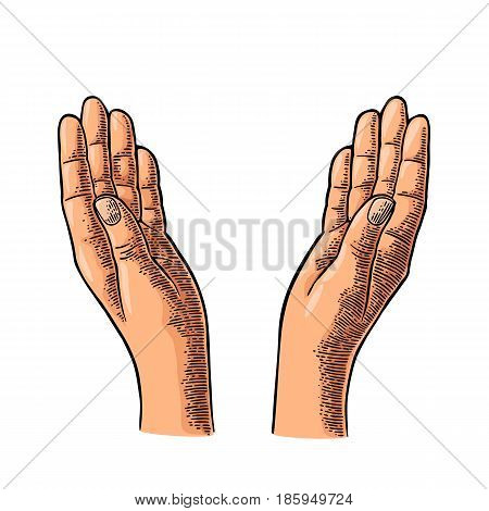 Two Praying Hands. Open empty palms up. Vector black vintage engraving illustration isolated on a white background. For web and poster