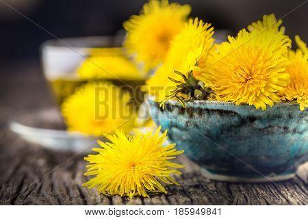Dandelion Tea.Yellow dandelion flowers and tea cups.