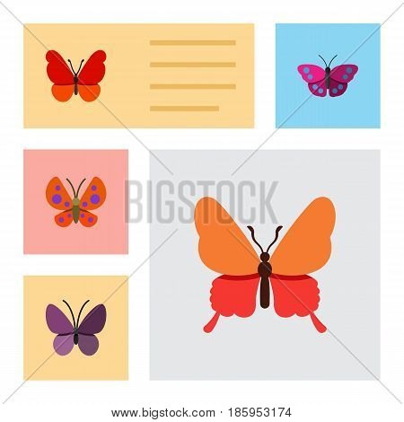 Flat Monarch Set Of Violet Wing, Moth, Danaus Plexippus And Other Vector Objects. Also Includes Monarch, Summer, Insect Elements.