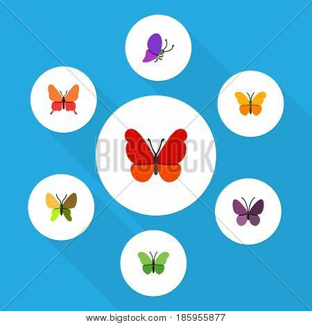 Flat Monarch Set Of Butterfly, Milkweed, Monarch And Other Vector Objects. Also Includes Butterfly, Insect, Moth Elements.