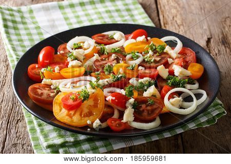 Vitamin Salad From Multi-colored Tomatoes, Onions And Blue Cheese Close-up. Vertical Top View