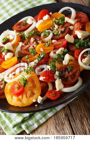 Salad Of Multi-colored Tomatoes, Onions And Roquefort Cheese Close-up. Vertical