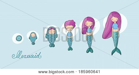 Stages of mermaid development. Vector illustration. Beautiful siren. Mythical creature