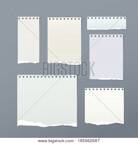 Ripped note, notebook, copybook paper sheets, stuck on gray background