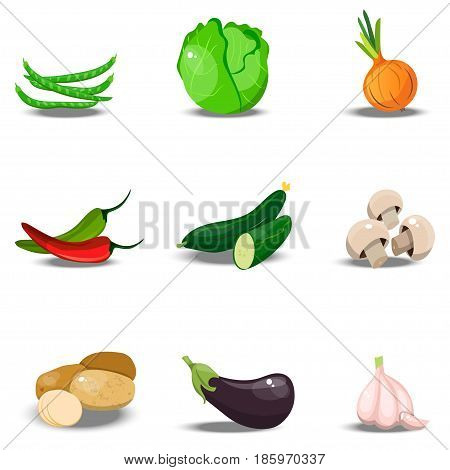 Very high quality original trendy vector set with fresh healty vegetables. Summer agriculture design. paprika, beans, onion, garlic, eggplant, cabbage, potato, champignon, pepper
