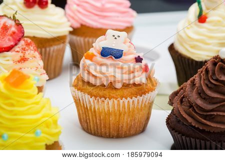 colorful cupcakes with different Tastes. Cupcake decorated candy bear. Small beautifull cakes on white table top. Close up. Popular dessert in restaurants cafes, confectioneries