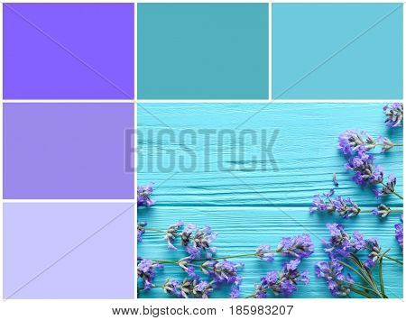Lilac color matching and lavender flowers on wooden background