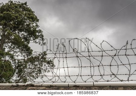 Auckland New Zealand - March 5 2017: Nasty barbed wire fence on top of wall at MOTAT Aviation Display sit under heavy rainy skies with one green tree.