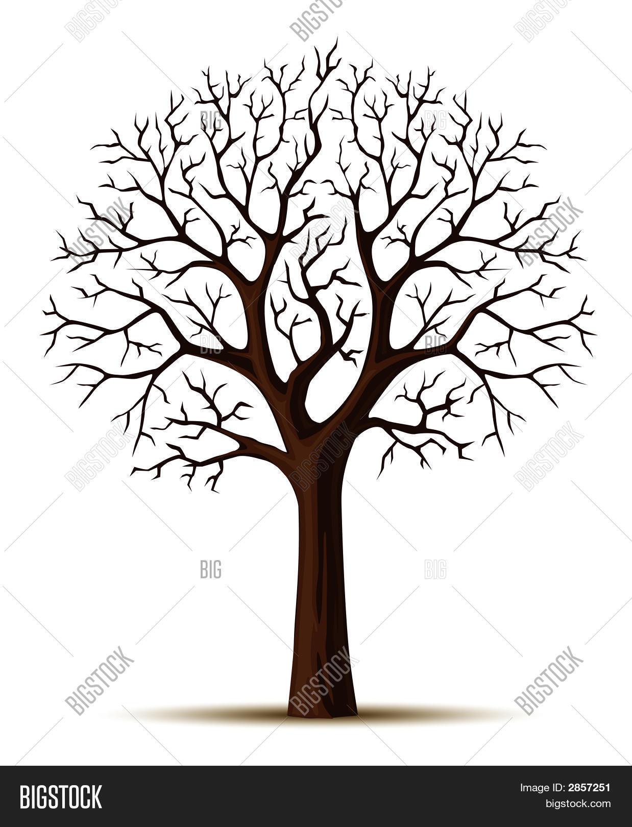 Tree Trunk Images Illustrations Vectors Free Bigstock