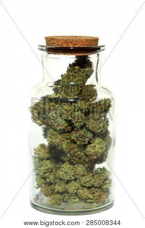 Marijuana. Glass Jar filled with Marijuana Buds. Cannibals Sativa buds in a glass stash jar. Isolated on white. Room for text. Medical Marijuana. Recreational Marijuana.