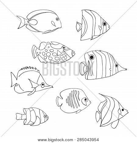 Tropical Fish Icon Set. Vector Isolated Characters. Butterflyfish, Clown Triggerfish, Damsel, Anemon