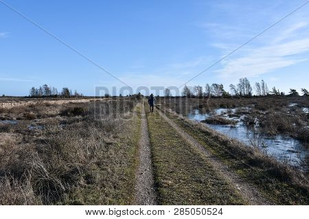 Beautiful Country Road With A Walking Person Straight Through A Great Plan Landscape At The Swedish